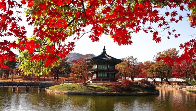 20 Preparation For A Vacation To South Korea Must Know